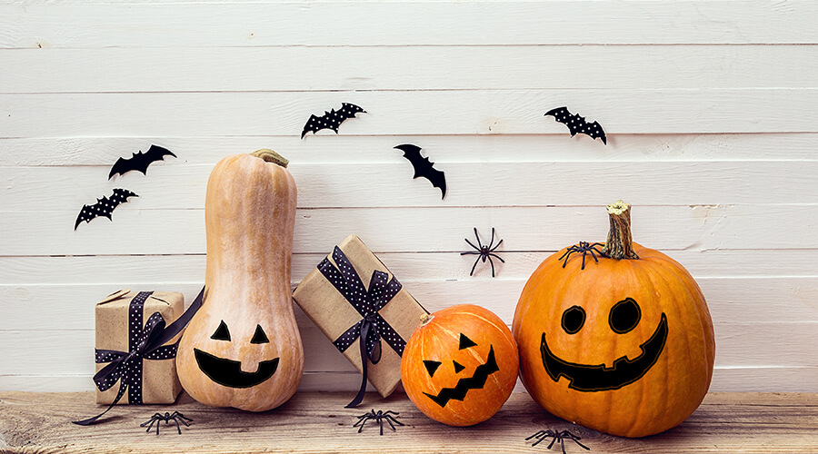 pumpkins and carved squash