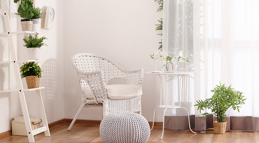 white interior with houseplants