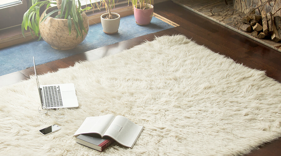 fluffy rug with laptop and books