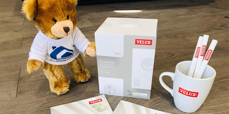 velux teddy bear feature image
